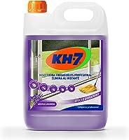 KH-7 Desic Insecticida Fregasuelos - Elimina y Protege tu Hogar Contra Todo Tipo de Insectos Rastreros Durante 15 días,...