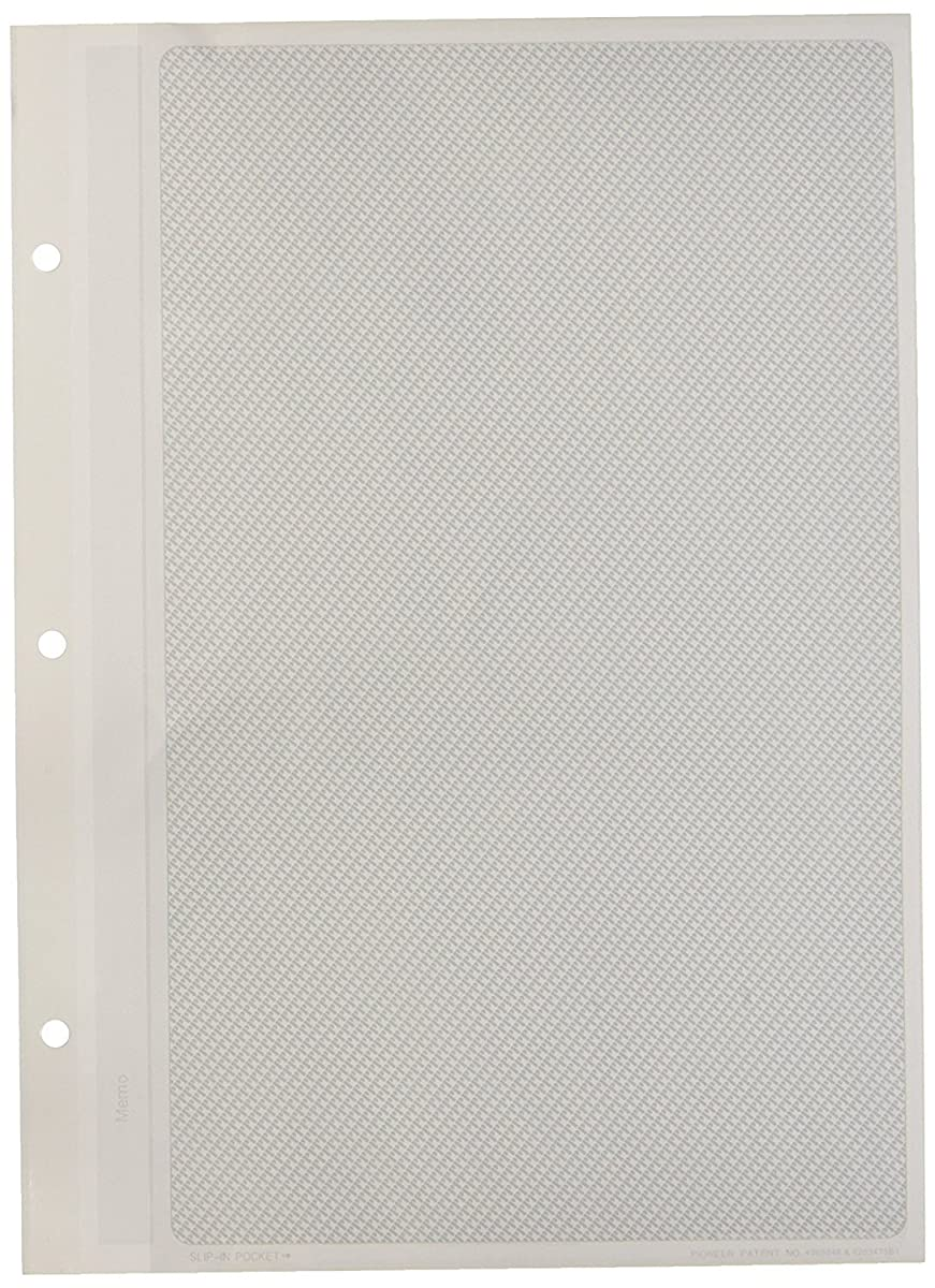 Pioneer Photo Albums 10 Pocket Refill for APS-247 Series Photo Albums, 8 by 10-Inch 2 PACK