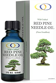red pine needle oil