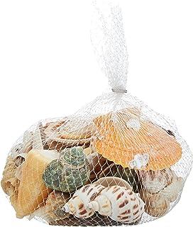 Mumoo Bear 200g Sea Shells Mixed Ocean Beach Seashells Colorful Natural Seashells Fish Tank Accessory