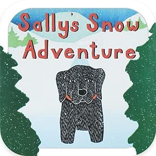 Sally's Snow Adventure