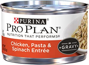 Best Canned Spinach Brand [2020 Picks]