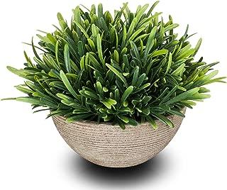 chuangxindaye Artificial Plant Potted Mini Fake Plant Decorative Lifelike Flower Green Plants (Round pot, Green)