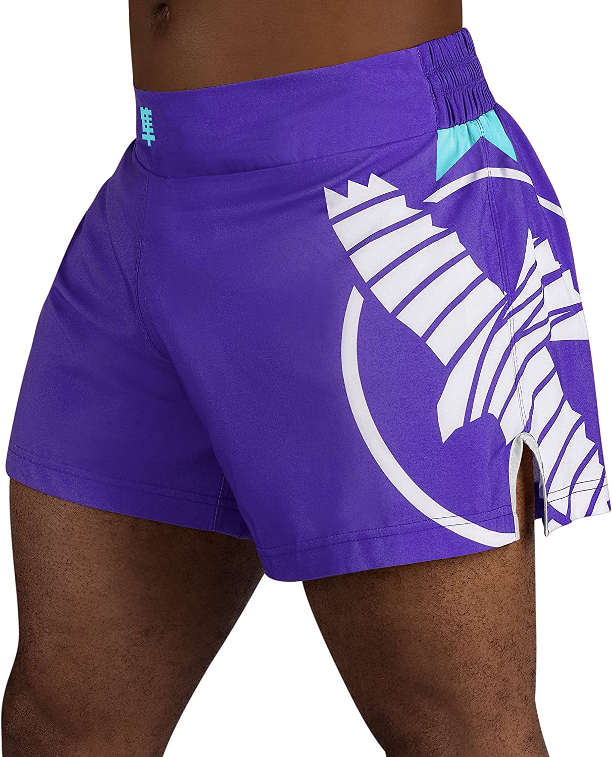 Hayabusa Men's Icon Kickboxing sold out Shorts Topics on TV