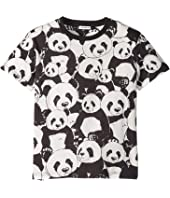 Dolce & Gabbana Kids - D&G Panda T-Shirt (Big Kids)