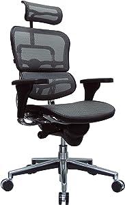 Eurotech Seating Ergohuman High Back Mesh Managers Chair, Grey