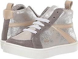 Silver/Gray/Platinum