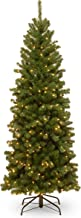 National Tree 6 Foot North Valley Spruce Pencil Slim Tree with 250 Clear Lights (NRV7-358-60)