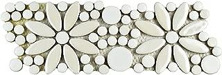 Best porcelain border tiles Reviews