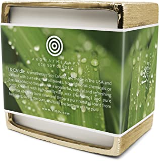 I & Candle, Big Pot 50 oz. Citronella & Lemongrass Aromatherapy Premium Eco Soy 5-Wick Candle. Made in the USA with Pure Essential Oils Blend and All Natural Ingredients. Net Weight: 50 oz.(1.41 kg)