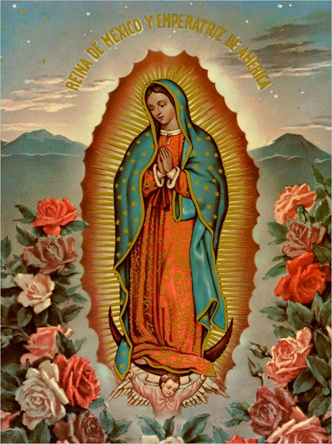 Metal Tin Sign Vintage Chic Art Decoration Virgen De Guadalupe Virgin Mary Catholic,Acts,Saints for Home Bar Cafe Farm Store Garage or Club 12