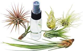 enclosed plant ecosystem