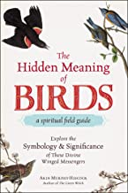 The Hidden Meaning of Birds--A Spiritual Field Guide: Explore the Symbology and Significance of These Divine Winged Messengers