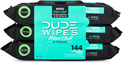 DUDE Wipes Flushable Wet Wipes Dispenser, Mint Chill, 48 Count (Pack of 3) Scented Wet Wipes with Vitamin-E, Aloe, Eucalyp...
