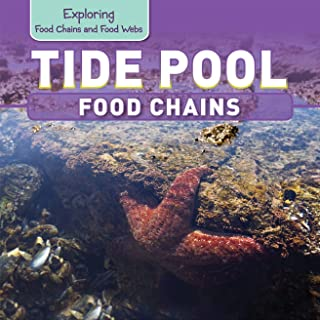 Tide Pool Food Chains