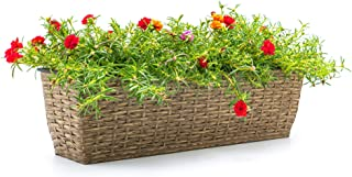 CATLEZA Medium Wicker Rectangle Planter Pot for Indoor and Outdoor Eco-Friendly Suitable for Plants, Herb, Succulents, Flo...