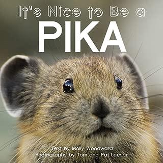 Best pika pika store Reviews