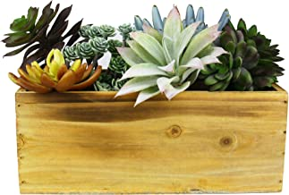CYS EXCEL Indoor Natual Planter Box, Available, Wood Planter, Decorative Box, Succulent and Floral Arrangements, Box with Removable Plastic Liner, H:4