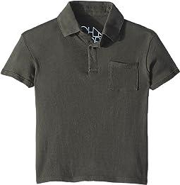 Chaser Kids - Cotton Jersey Short Sleeve Polo (Toddler/Little Kids)