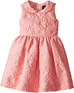 Bubble Flower Jacquard Gathered Sleeve Dress (Toddler/Little Kids/Big Kids)