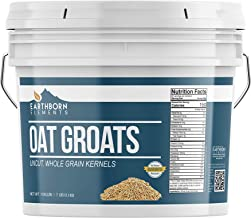 Oat Groats, 1 Gallon Bucket (7 LBS) by Earthborn Elements, High Quality & Uncut, Whole & Hulless Oat Kernels, Unprocessed ...