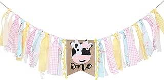 farm animal first birthday shirt