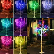 16 Color Changing Lit Birch Tree Lighted, Multicolor 5 Feet Artificial Twig Bonsai Tree Light LED Fake Tree Lamp Christmas...