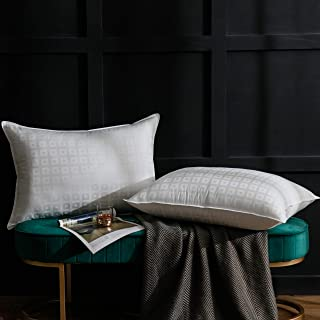 Ventidora Down Alternative Pillow King Size (2-Pack),100% Egyptian Cotton Hypoallergenic Pillow for Sleeping Plush Gel Fib...
