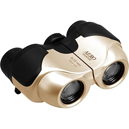 Kenko 双眼鏡 AERO MASTER 8×18 mini ポロプリズム式 8倍 18口径 軽量コンパクト ゴールド 97613