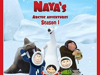 Naya's Arctic Adventures