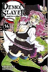 Demon Slayer T14 Format Kindle