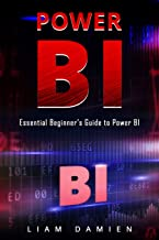 Power Bi: Essential Beginner's Guide to Power BI (English Edition)