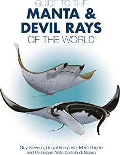 manta ray inc