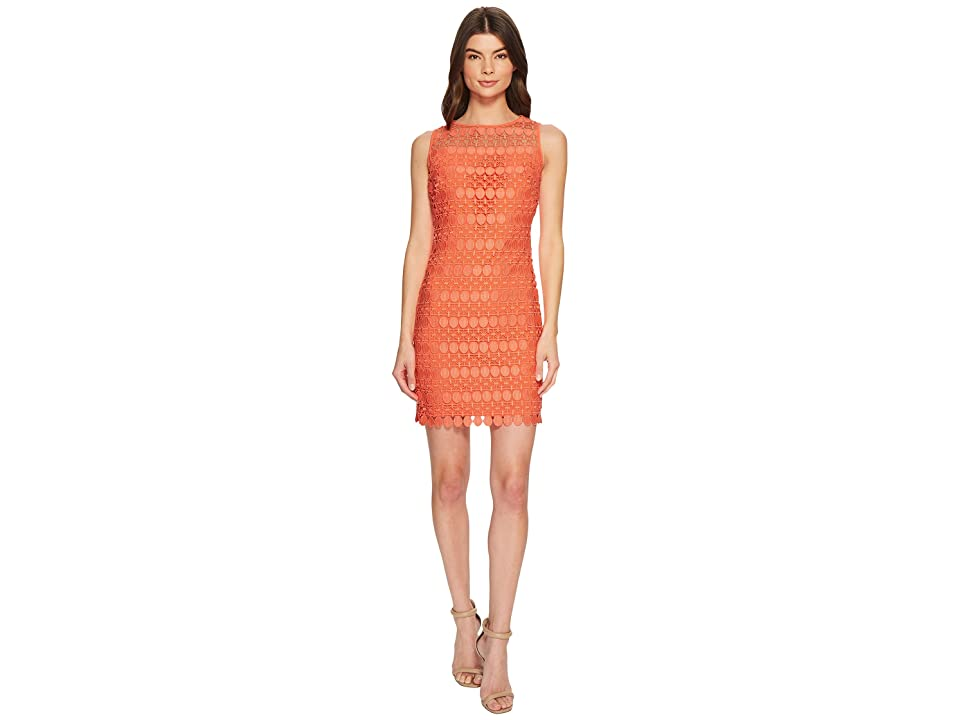 LAUREN Ralph Lauren Petite Melia Circlet Geo Lace Dress (Cala Lilly) Women