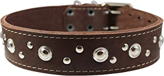 Thick Genuine Leather Studded Dog Collar 2