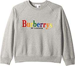 Elin Sweatshirt (Little Kids/Big Kids)