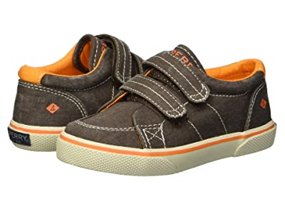 Sperry Kids Halyard HL (Toddler/Little Kid) (Brown Saltwash Canvas) Boys Shoes