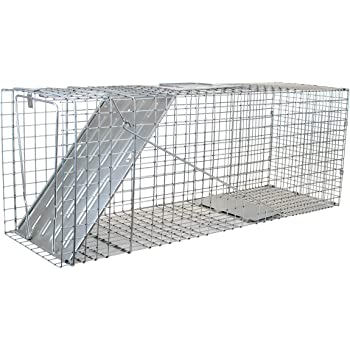 Havahart 1079 Large 1-Door Humane Animal Trap for Raccoons, Cats, Groundhogs, Opossums