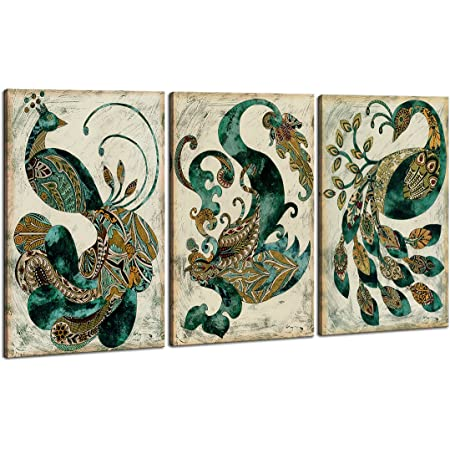 Amazon Com Loomarte 3 Piece Canvas Wall Art Modern Peacock Decor Giclee Canvas Prints Framed Home Decor Abstract Animals Wall Decorations Paintings For Living Room Bedroom Dining Room Bathroom Posters Prints