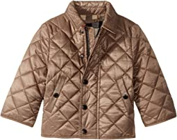 Burberry Kids Mini Luke Quilted Jacket (Infant/Toddler)
