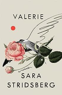 Valerie: or, The Faculty of Dreams: A Novel