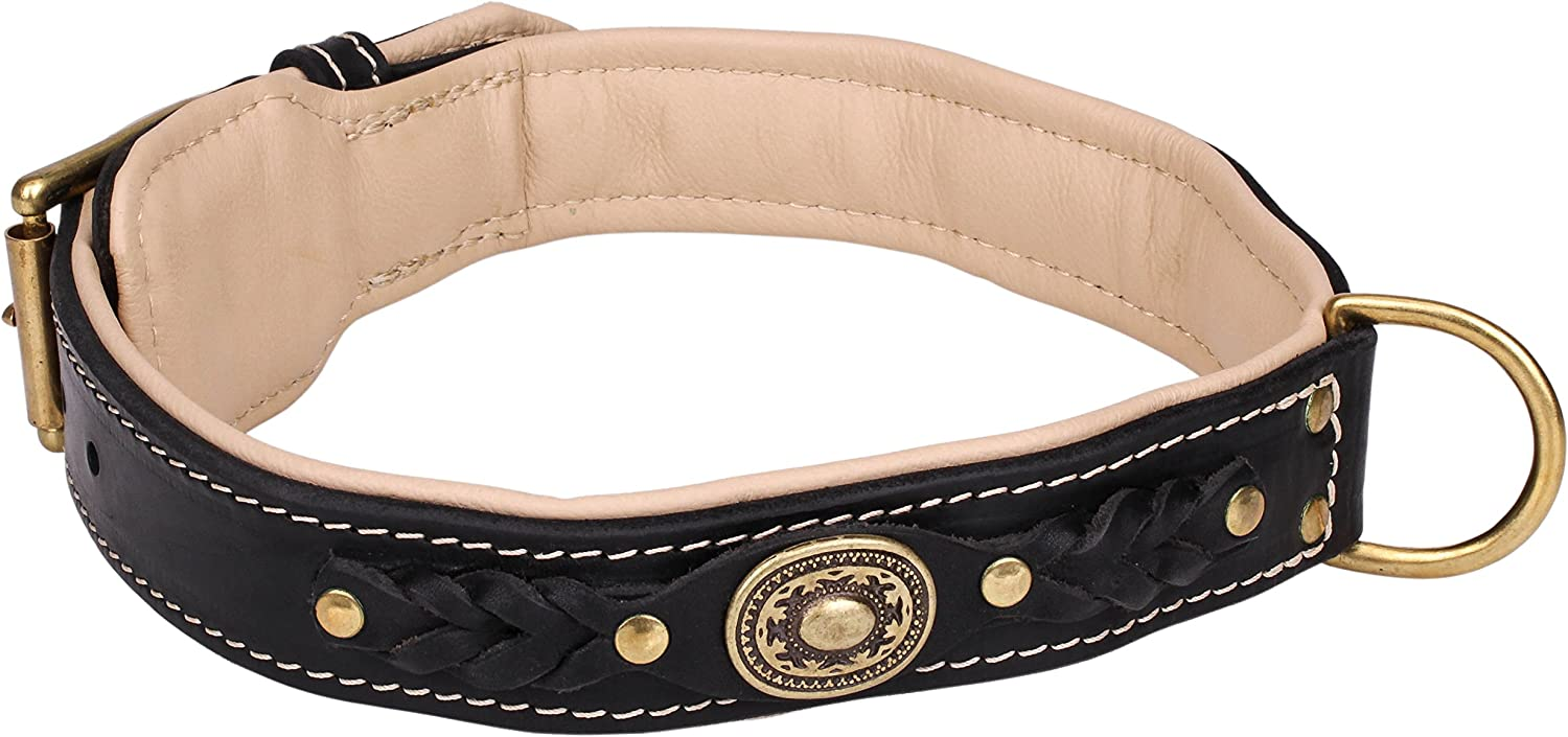 22 inch 'Pleasant Touch' Nappa Padded Brown Leather Dog Collar with Decorative Elements