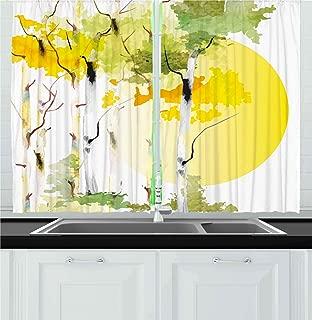 artwork curtains