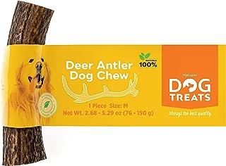 deer antler chew toy