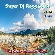 Reggaeton Instrumental