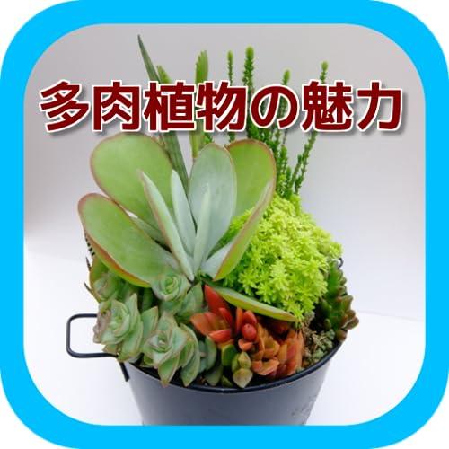 多肉植物の魅力 スライドver.