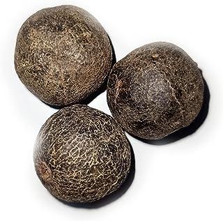 Rudraksha Fruit Original Natural 3 FAL Fruit Combo