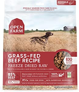 Open Farm Freeze Dried Raw Dog Food, Humanely Raised Meat Recipe with Non-GMO Superfoods and No Artificial Flavors or Preservatives, Grass Fed Beef Recipe Freeze Dried - 22oz