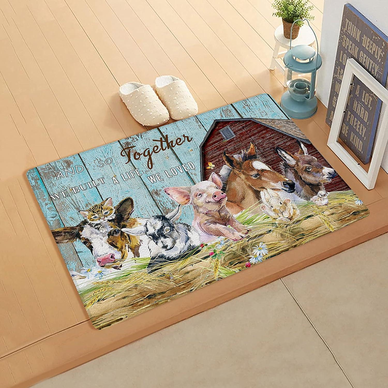 Doormat Ranking TOP3 for Outdoor Indoor Front 18''x59'' Dealing full price reduction Entrance Door Kitchen