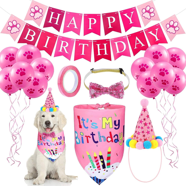 Skylety Dog Special price Birthday Bandana Hat Popular brand in the world Set B